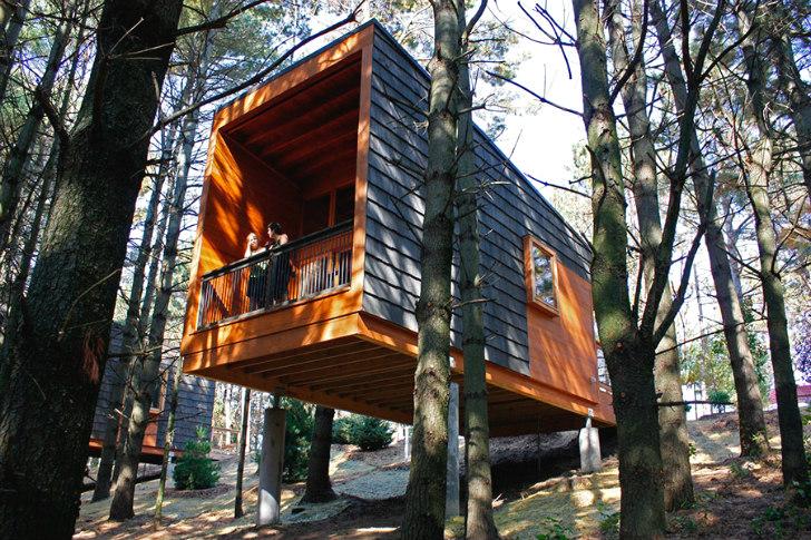 Whitetail-Woods-Cabins-HGA-1[1]