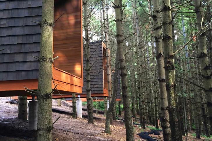Whitetail-Woods-Cabins-HGA-3[1]